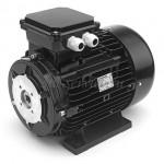 Nicolini 6,5 кВт, 1450 об/мин, полый вал