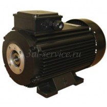Электродвигатель EME TP 112 L4 с термозащитой